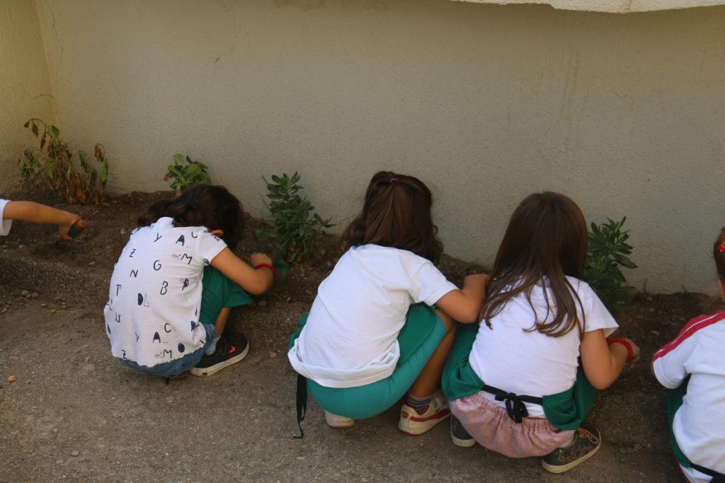 escola casa nostra interedats